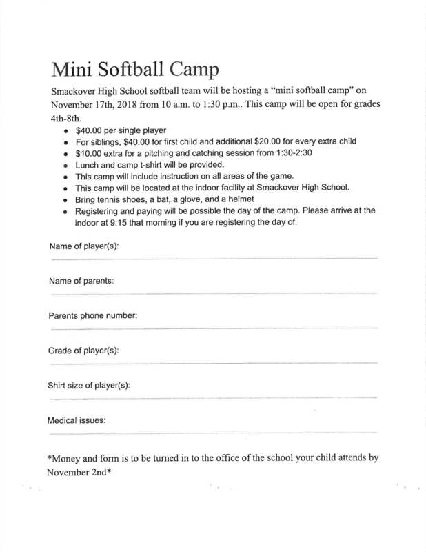 Mini Softball Camp flyer
